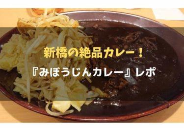 新橋の美人店員さんが作るデミグラスカレー!『みぼうじんカレー』レポ