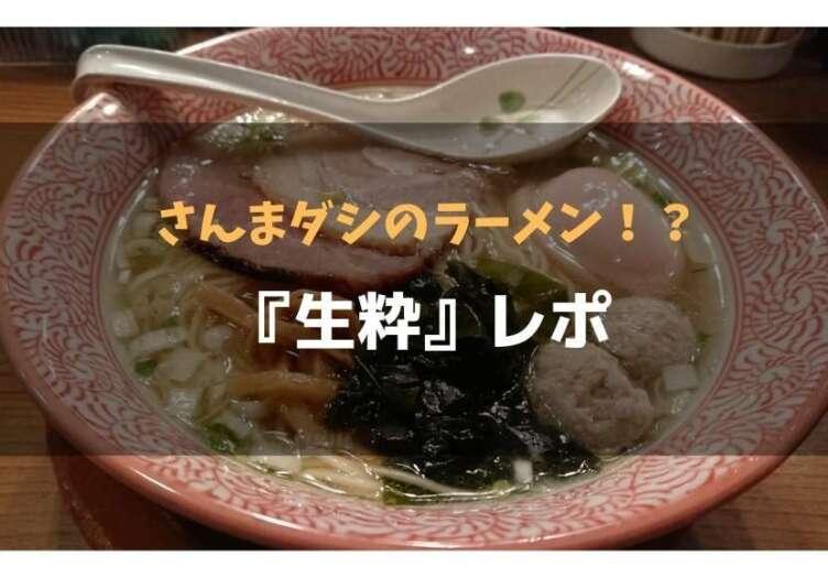 f:id:kuro2270:20190331001052j:plain